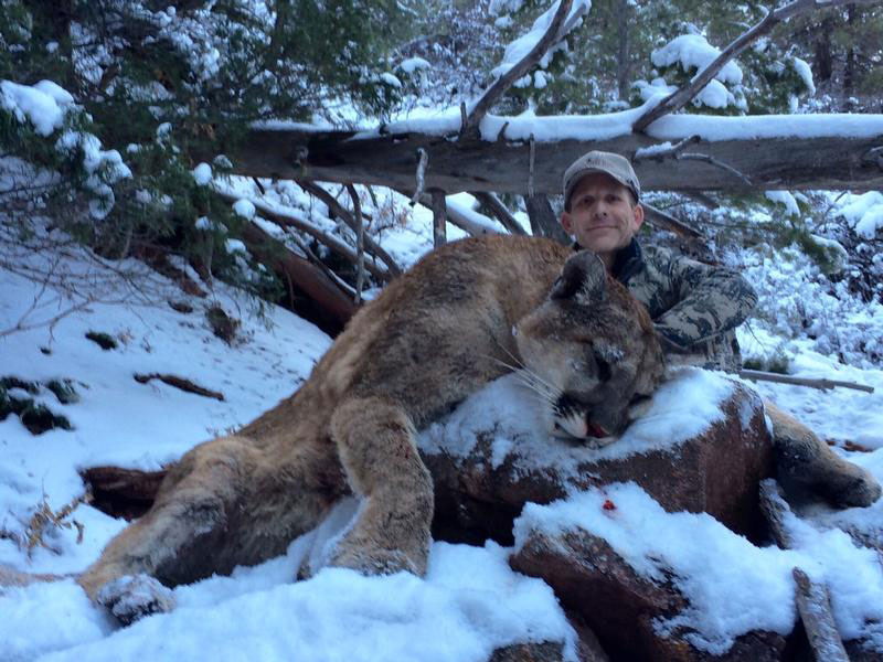Hunter and mountain lion