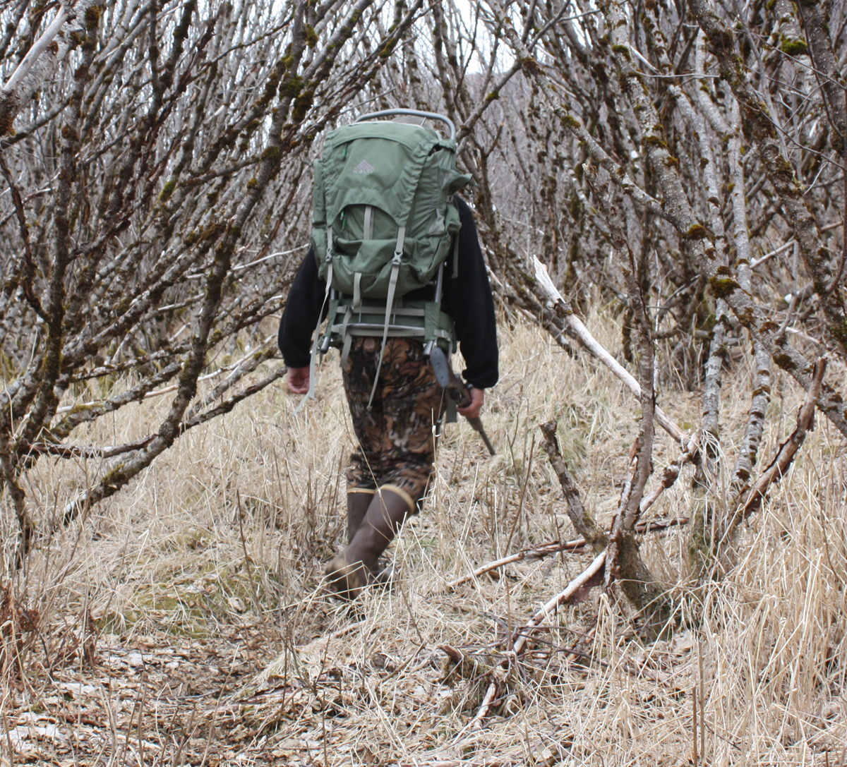 Kodiak-Monster-Walking-through-the-Alders