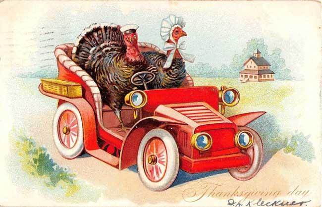 turkeys driving